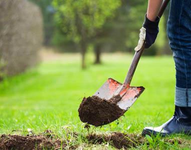 SERTIĆ j. d. o. o., Hortikultura, vrt